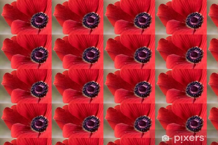 Vinylová tapeta na míru Close-up Červený květ Anemone - Štěstí