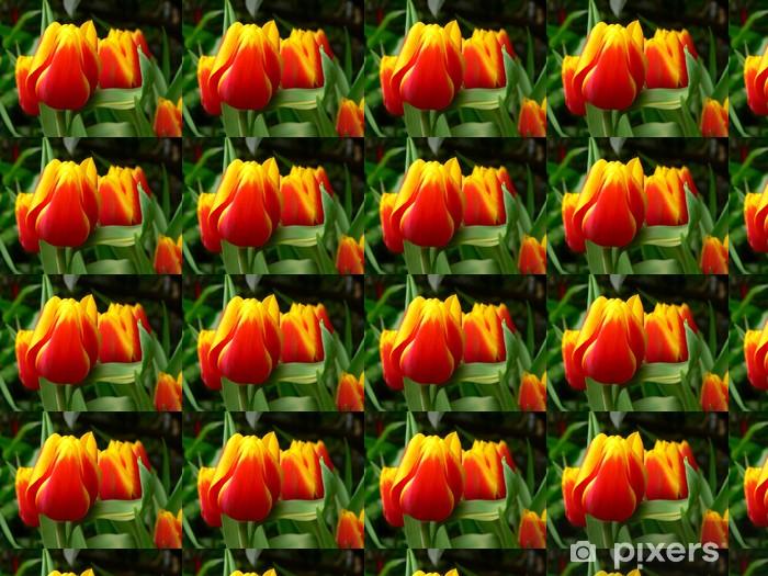 Tapeta na wymiar winylowa Tulpenimpression - Tulipany