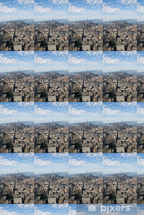 aereal view of new york city Vinyl Custom-made Wallpaper - American Cities