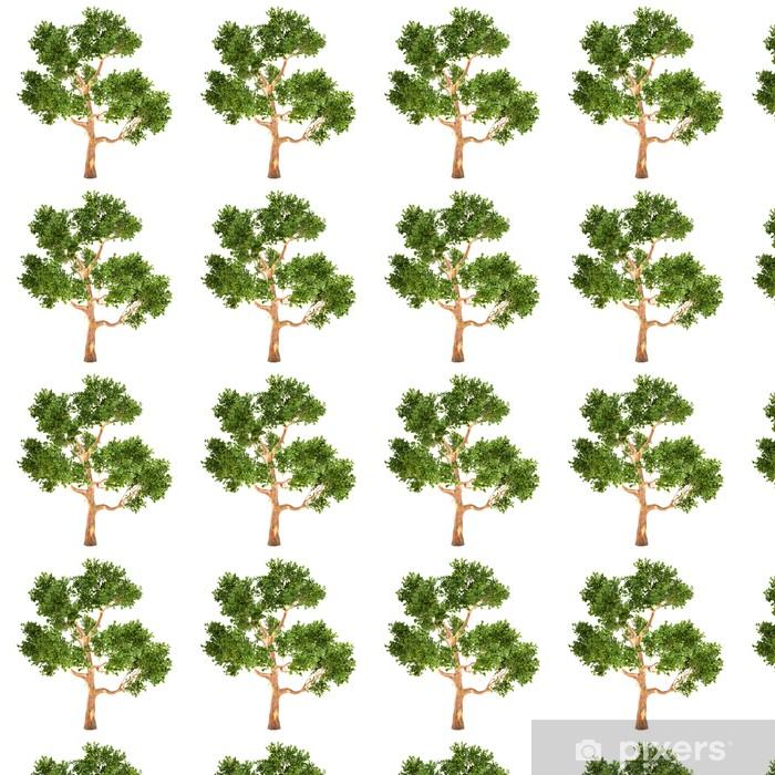 Carta da parati in vinile su misura Elevato Eucalyptus albero isolato - Stagioni