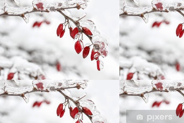 Tapeta winylowa Berberis oddział pod ciężkim śniegiem i lodem. Selektywne fokus - Pory roku