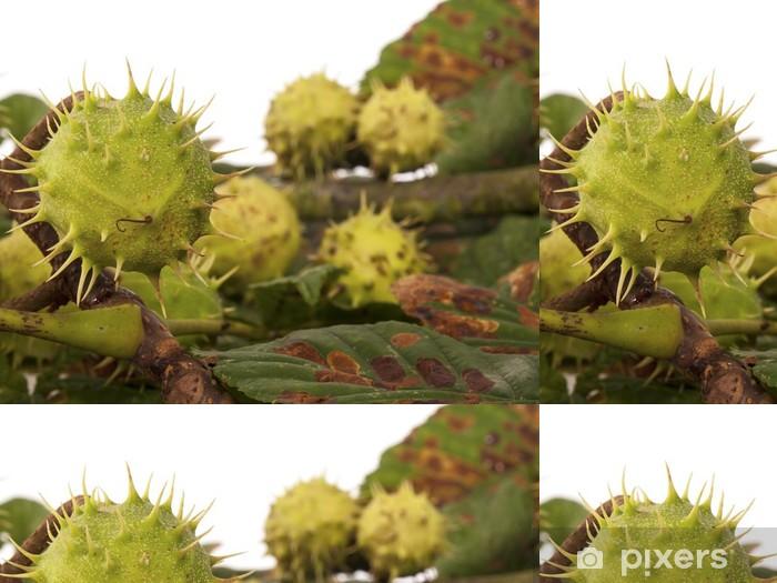 Vinyltapete Kastanien mit Blättern als Hintergrund - Jahreszeiten