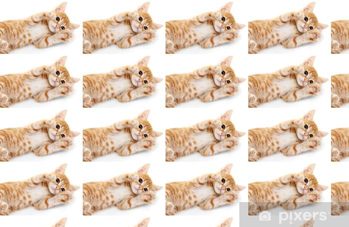 Papel pintado estándar a medida Lindo gatito rojo aislado en blanco - Mamíferos