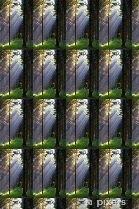 Vinylová tapeta na míru Sluneční paprsky v tajemné lesy - Ekologie