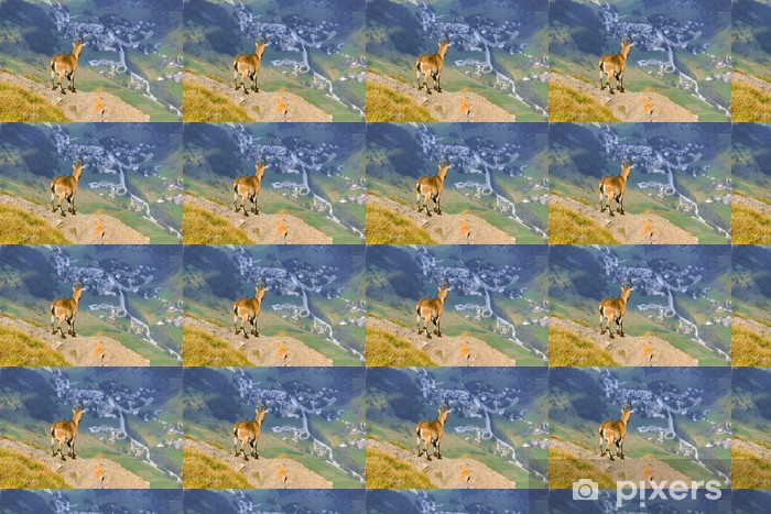 Stambecco osserva paese di montagna Vinyl Custom-made Wallpaper - Mammals
