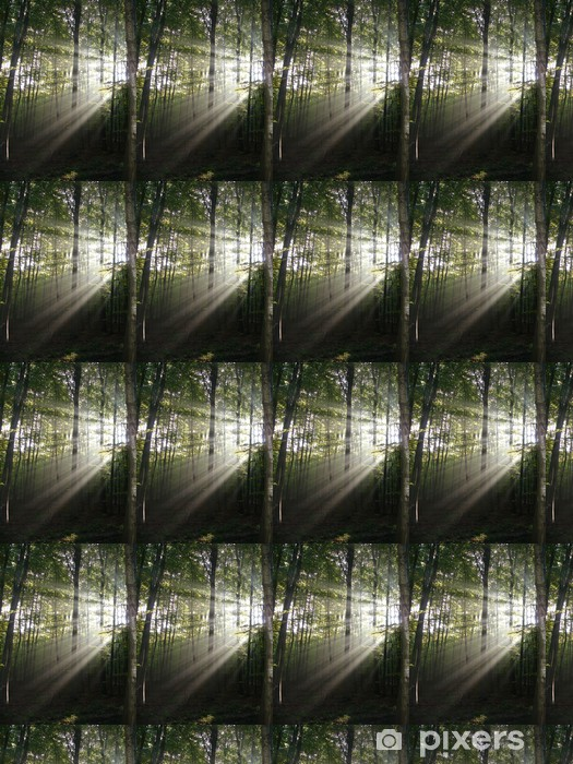 Tapeta na wymiar winylowa Światła w lesie - Abstrakcja