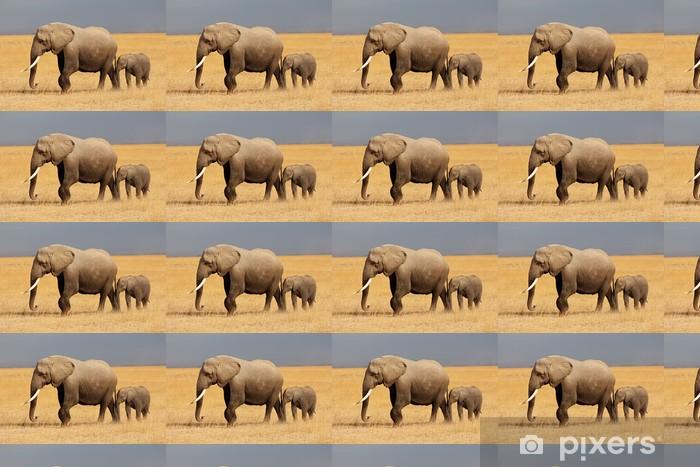 Vinylová tapeta na míru Slon africký s teletem, Amboseli Národní park - Témata