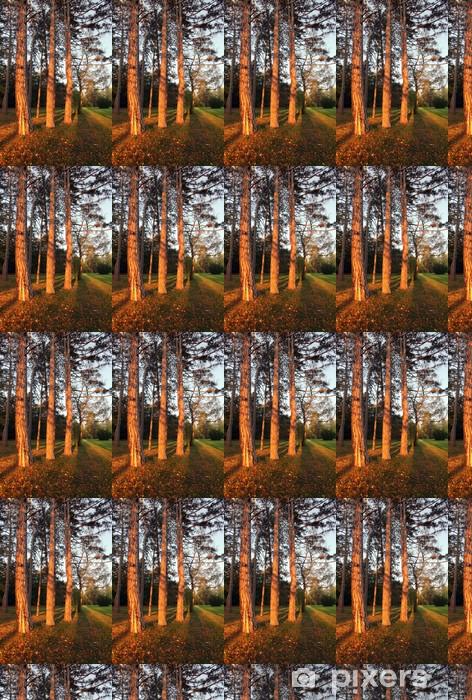 Papier peint vinyle sur mesure Lever de soleil dans une forêt de pins - Forêt
