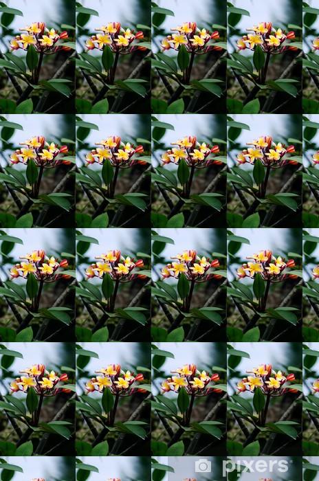 Papier peint vinyle sur mesure Frangipanier (Plumeria rubra) - Fleurs
