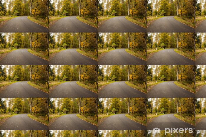 Papier peint vinyle sur mesure Route de campagne le long des arbres dans la forêt luxuriante - Forêt