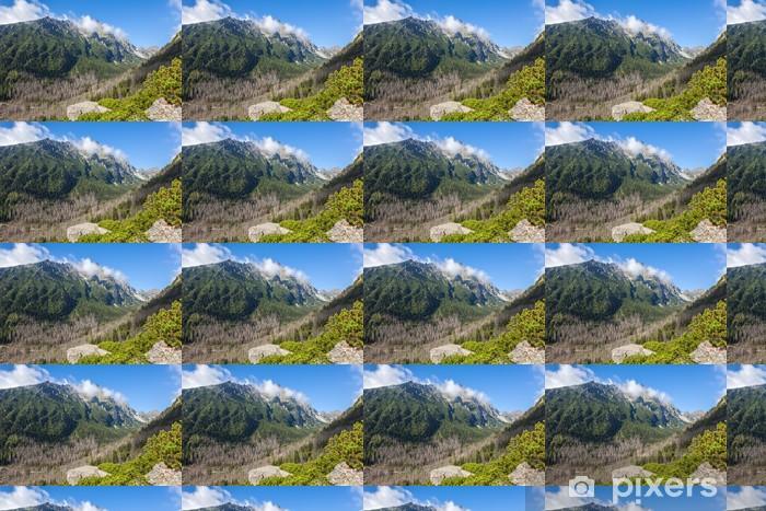 Papier peint vinyle sur mesure Belle vue dans les Tatras - Thèmes