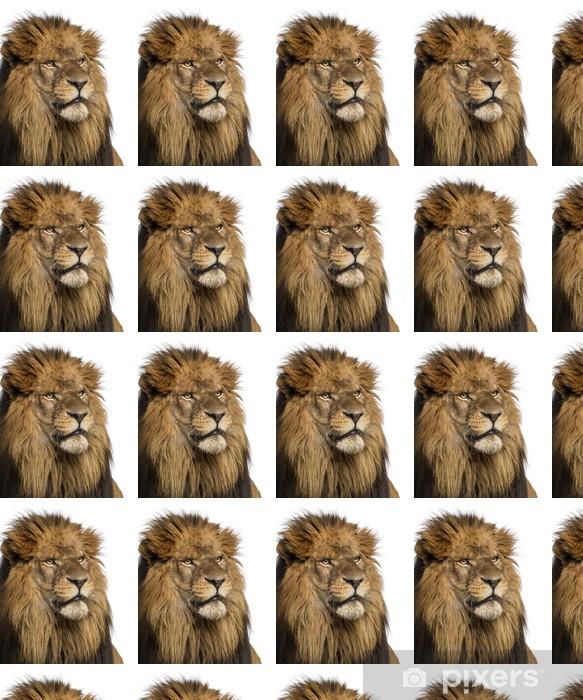 Tapeta na wymiar winylowa Close-up Lew, Panthera Leo 10 lat, samodzielnie - Ssaki
