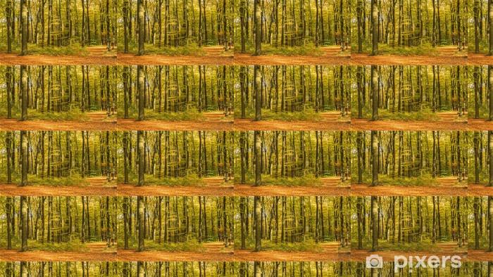 Tapeta na wymiar winylowa Las w kolorach jesieni - Tematy
