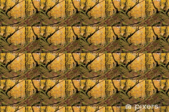 Papier peint vinyle sur mesure Petite vallée Montegrande forêt de hêtre à l'automne, dans les Asturies. - Thèmes