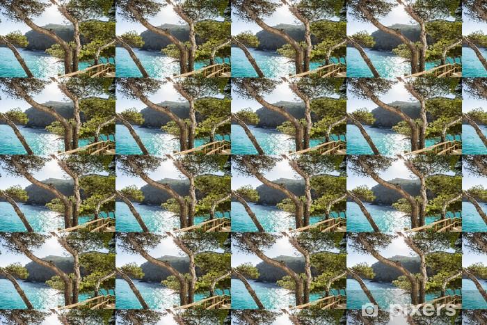 Vinyl behang, op maat gemaakt Cami de Ronda - Water
