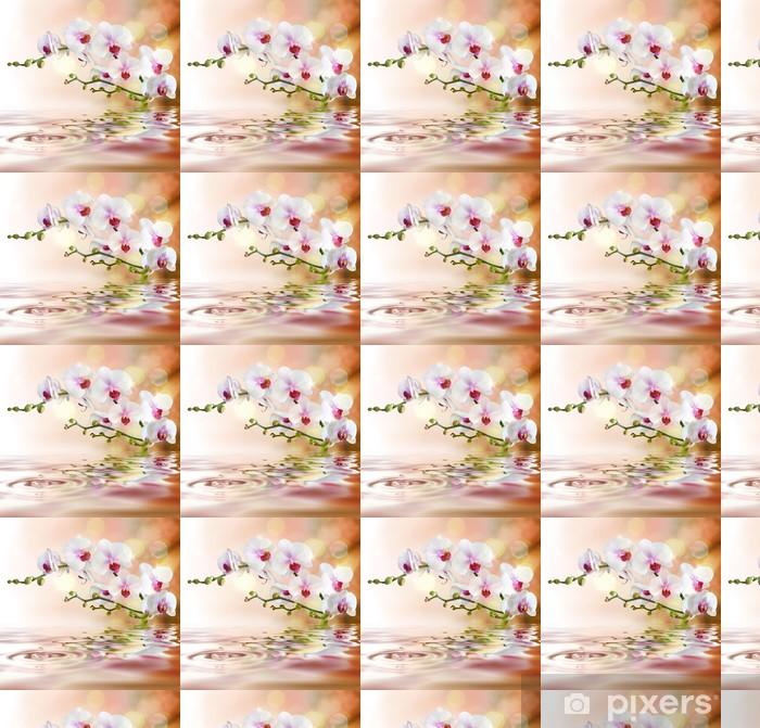 Tapeta na wymiar winylowa Biały orchidee na wody z kropli -