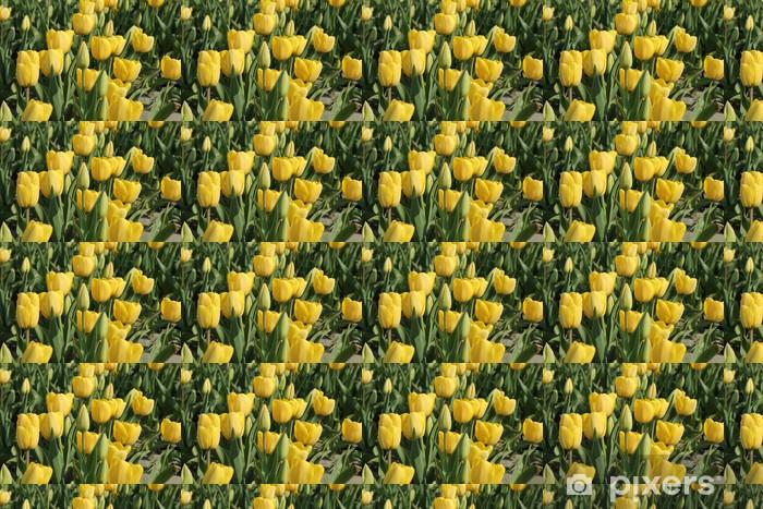 Vinylová tapeta na míru Žluté tulipány v poli - Roční období