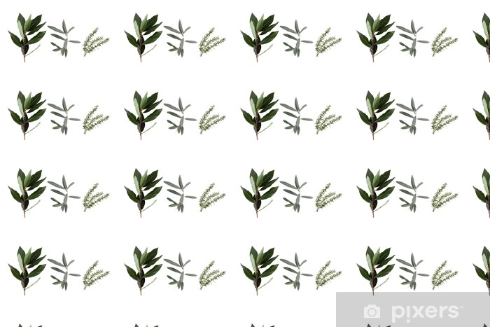 detail of the medicinal plant in closeup over white background Vinyl custom-made wallpaper - Spices, Herbs and Condiments