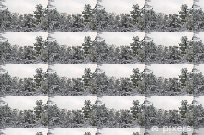 Papier peint vinyle sur mesure Forêt enneigée en hiver - Forêt