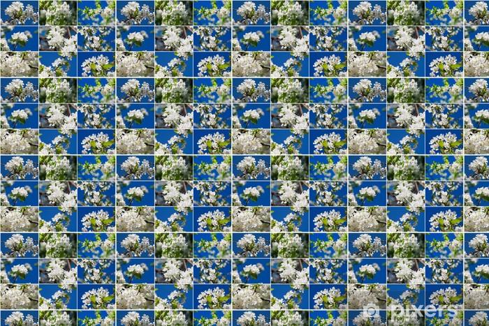 Apple flowers Vinyl custom-made wallpaper - Flowers