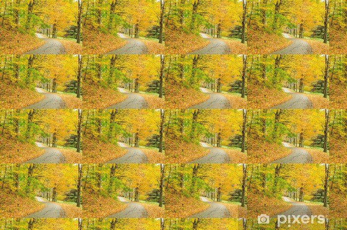 Carta da parati in vinile su misura Irregolare Strada di campagna e Colori d'autunno - Foreste
