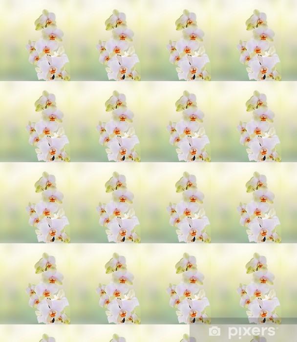 Papier peint vinyle sur mesure Belles fleurs Orchid.Beauty.Flora japonais - Thèmes