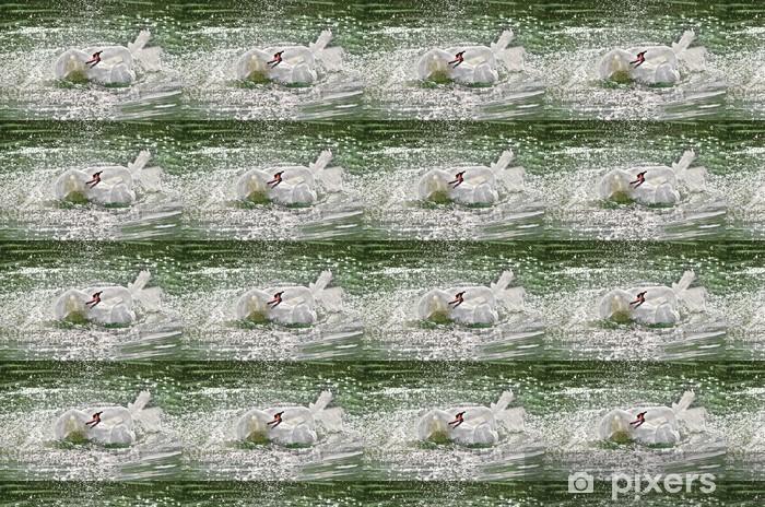 Vinylová tapeta na míru Белый лебедь машет крыльями в воде. Летят брызги - Ptáci