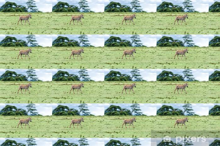 Vinylová tapeta na míru Zebra - Témata