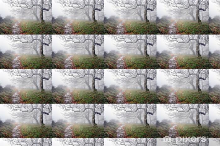 Tapeta na wymiar winylowa Szlak w lesie z tajemniczych drzew - Tematy