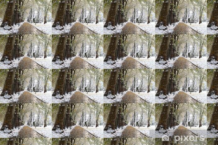 Vinyltapete nach Maß Schnee im Park - Jahreszeiten