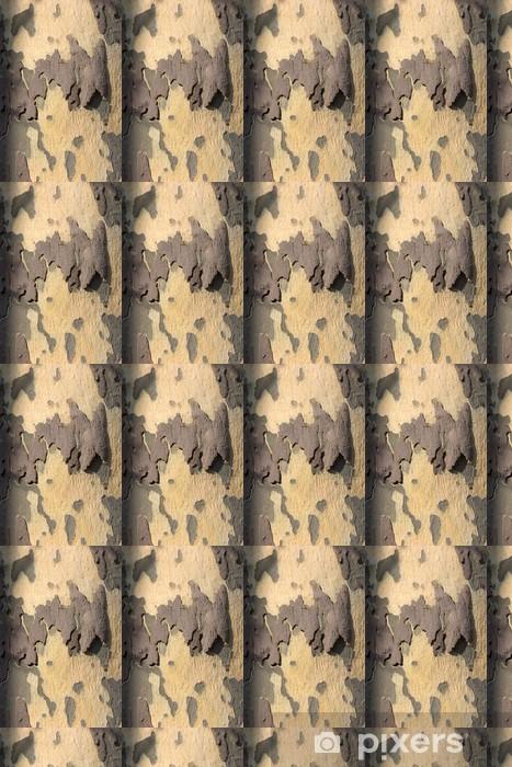 Vinyltapete nach Maß Rinde der Platane - Bäume