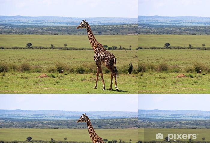 Vinil Duvar Kağıdı Yabani zürafa - Afrika