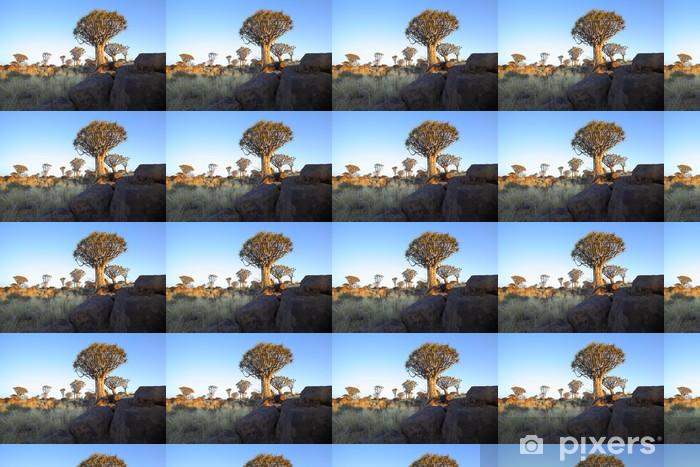 Papier peint vinyle sur mesure Roches et les arbres carquois à l'arbre de la forêt Quiver - Afrique