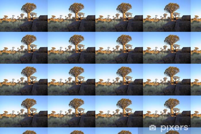 Vinyltapete nach Maß Felsen und Bäume Köcher an der Köcherbaumwald - Afrika