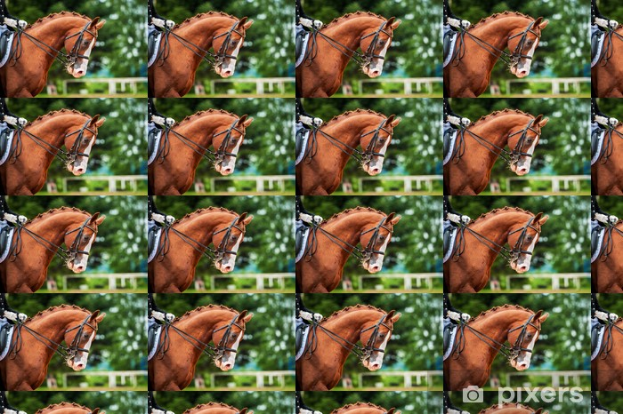 Tapeta na wymiar winylowa Portret red konia w konkurencji ujeżdżenia - Sporty indywidualne