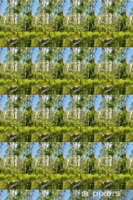 Tapeta na wymiar winylowa Wiosna brzozowy gaj - Tematy