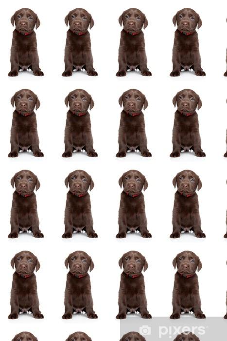 Papier peint vinyle sur mesure Labrador chiot portrait - Mammifères