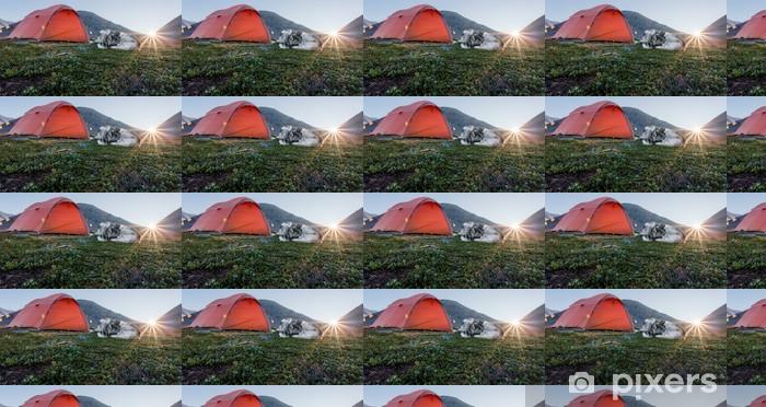 Tapeta na wymiar winylowa Wschód słońca z namiotem i psem w Szwecji - Ssaki