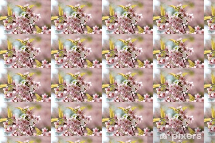 Papier peint vinyle sur mesure Près de détail rose sakura - Fleurs