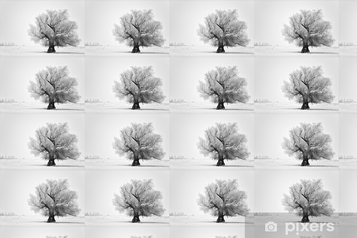 Beautiful tree in winter time in February 2014, Romania Vinyl Custom-made Wallpaper - Themes