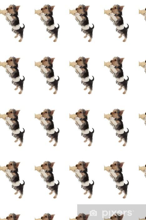 Vinylová tapeta na míru Ovázanou jorkšírský teriér štěně na kost - Savci