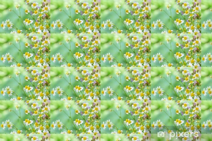 Papier peint vinyle sur mesure Fleurs de camomille dans le jardin - Fleurs