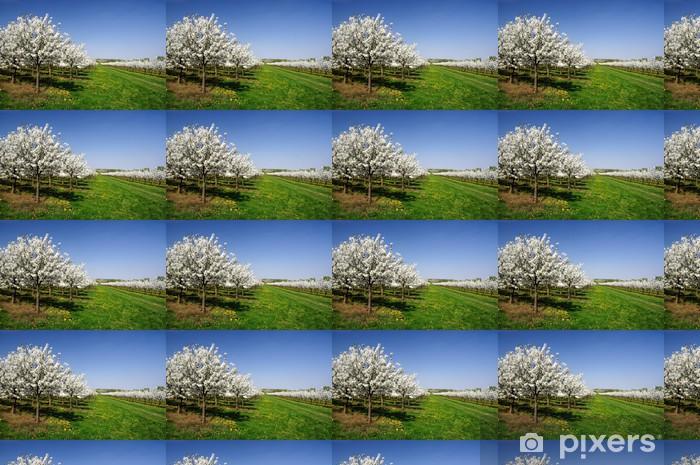 Papier peint vinyle sur mesure Cerisiers en fleur - Saisons