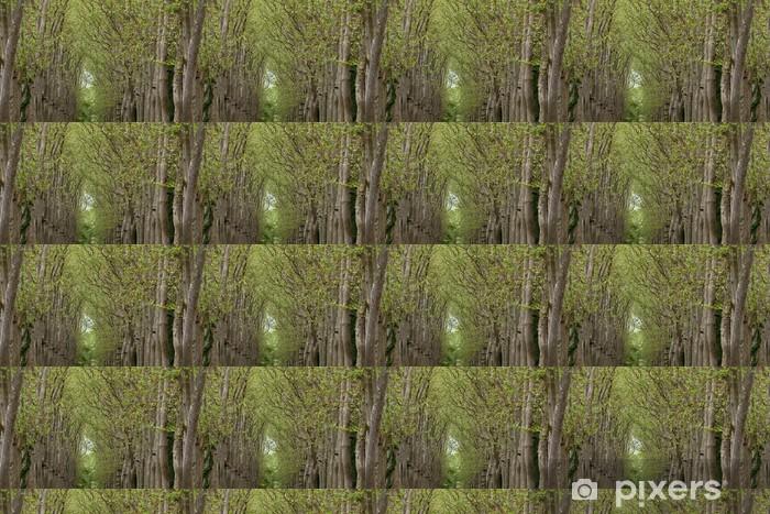 Vinylová tapeta na míru Alej stromů v areálu zámku Chenonceau - Evropa