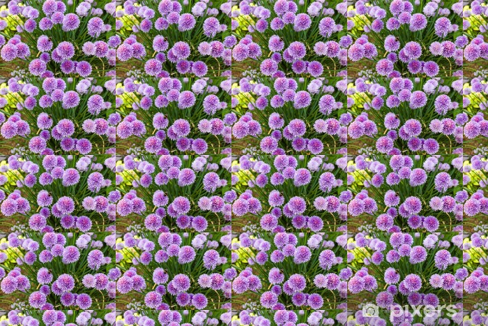Papier peint vinyle sur mesure Fleurs à la ciboulette - Fleurs