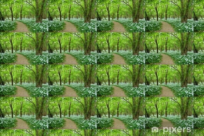 Tapeta na wymiar winylowa Dziki Czosnek Growing w Woodland - Rośliny