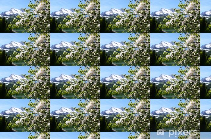 Vinyl behang, op maat gemaakt Lente in Zwitserland. - Bergen