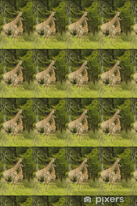 Vinyltapete nach Maß Giraffenmutter mit Kind - Themen