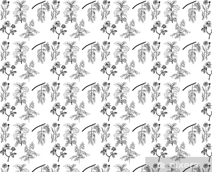 Tapeta na wymiar winylowa Zestaw pięciu dzikich ziół szkice na białym - Rośliny