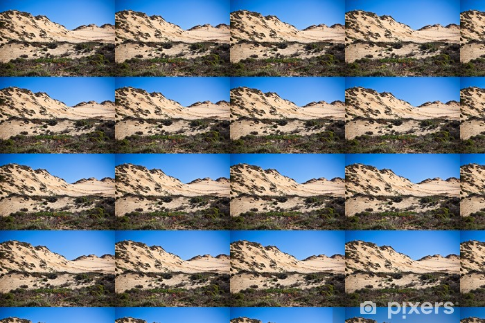 Dunes at the Ocean Beach in Portugal Vinyl Custom-made Wallpaper - Europe
